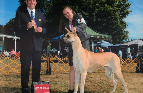 Nala taking a BOB - and an example of not all show pictures are good ones :-)