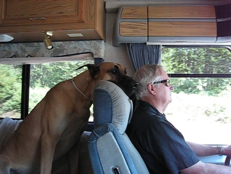 captain in RV back seat driving Tom