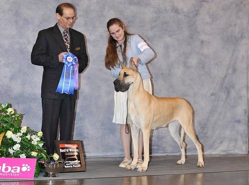 Nala gest 5 pt major at WVGDC at 16 months