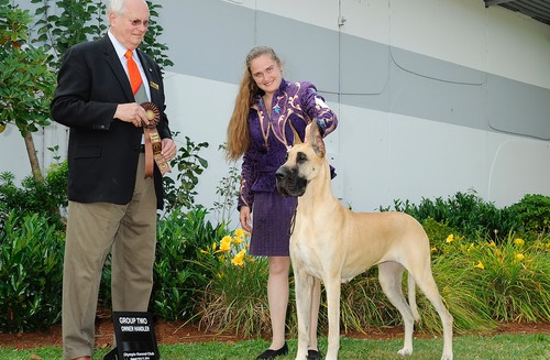Nala gets an owner handler group 2
